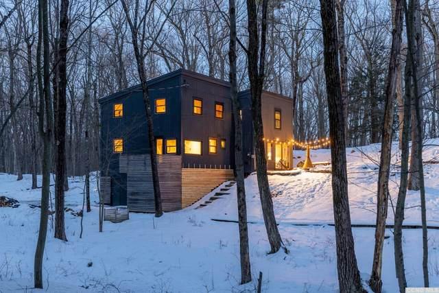 108 White Mills Road, Chatham, NY 12037 (MLS #136345) :: Gabel Real Estate