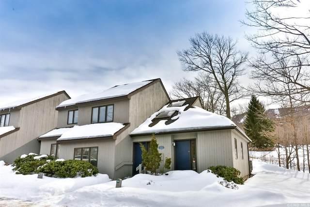 14 C. D. Lane Road #101, Windham, NY 12496 (MLS #136363) :: Gabel Real Estate
