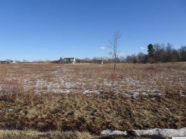 100 Dahlgren Road, Kinderhook, NY 12106 (MLS #136395) :: Gabel Real Estate