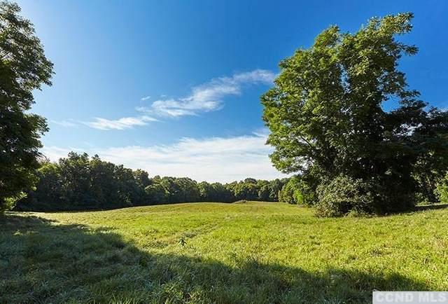 126 Cedar Heights, Rhinebeck, NY 12572 (MLS #136453) :: Gabel Real Estate