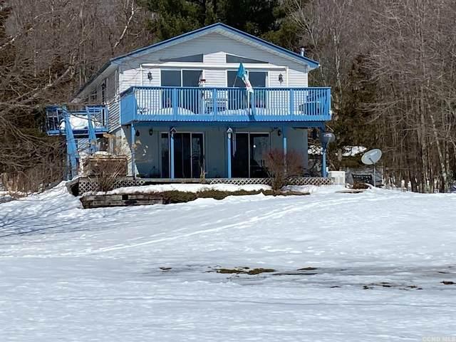 139 Fawn Hill Road, Ashland, NY 12407 (MLS #136486) :: Gabel Real Estate