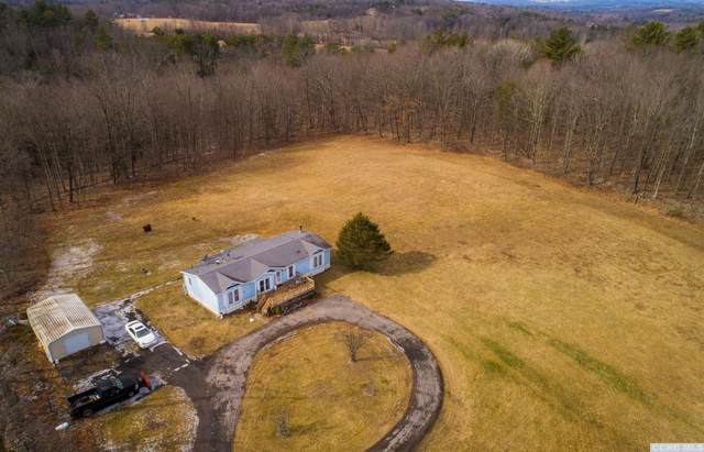 67 Mcstein Lane, East Durham, NY 12423 (MLS #136497) :: Gabel Real Estate