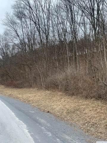 0 Barrus Road, Coxsackie, NY 12051 (MLS #136548) :: Gabel Real Estate
