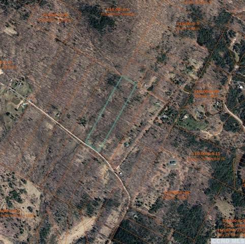 0 Park Road, Lexington, NY 12452 (MLS #136572) :: Gabel Real Estate