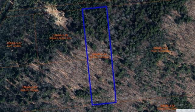 0 Norwegian Road, Lexington, NY 12452 (MLS #136613) :: Gabel Real Estate