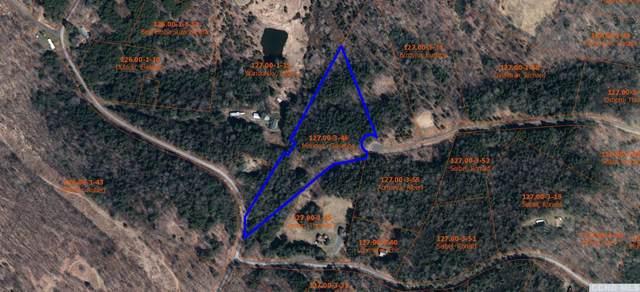 0 Mountain View Drive, Lexington, NY 12452 (MLS #136614) :: Gabel Real Estate