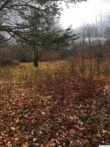 0 County Road 2, Prattsville, NY 12468 (MLS #136635) :: Gabel Real Estate