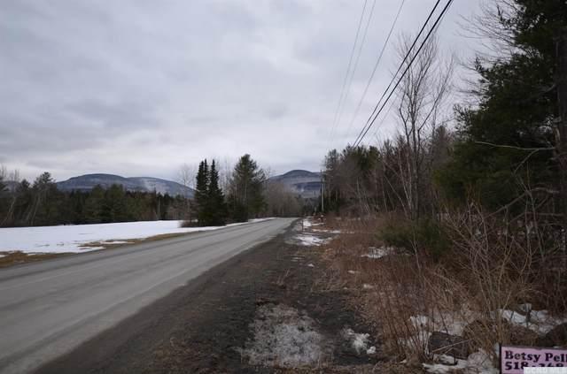 17 Elka Park Road, Hunter, NY 12442 (MLS #136649) :: Gabel Real Estate