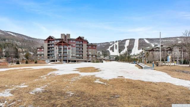 10 Resort Drive, Windham, NY 12496 (MLS #136653) :: Gabel Real Estate