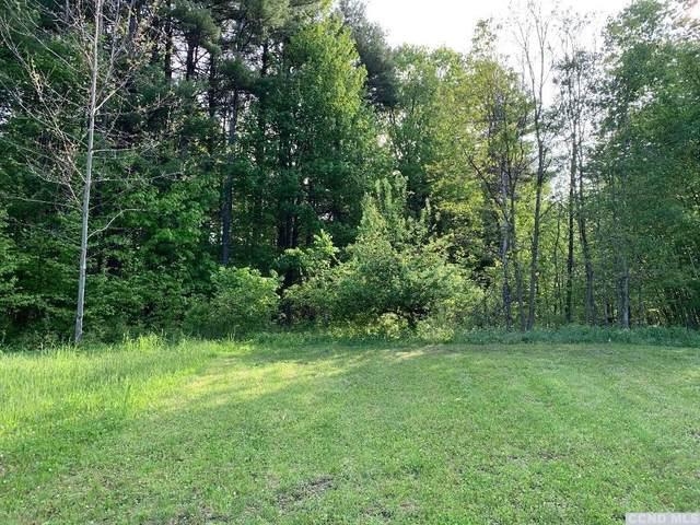 0 Birch Hill Drive, Greenville, NY 12431 (MLS #136668) :: Gabel Real Estate
