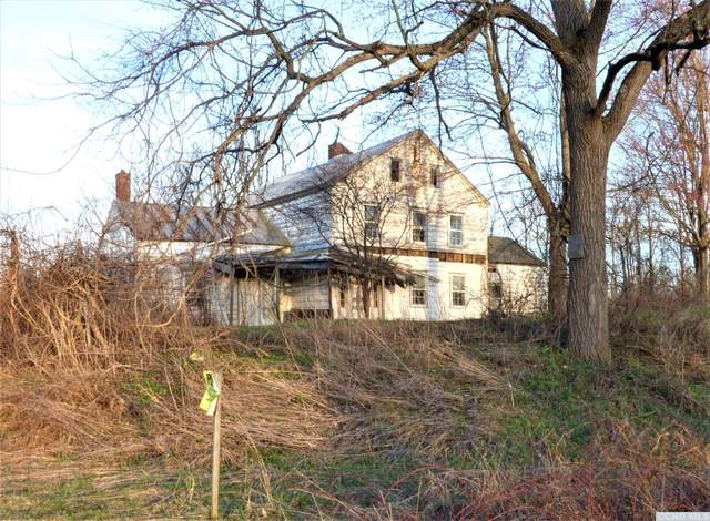 243 Lasher Avenue, Germantown, NY 12526 (MLS #136815) :: Gabel Real Estate