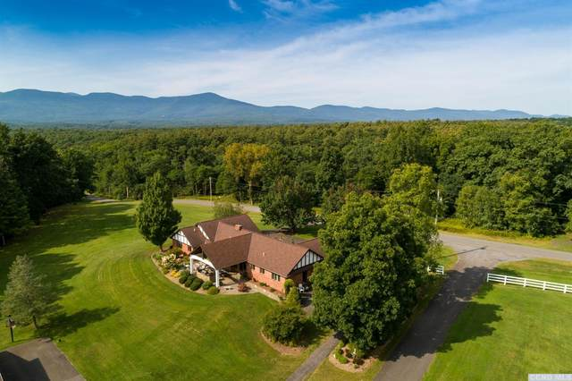 430 Red Mill Road, Freehold, NY 12431 (MLS #136858) :: Gabel Real Estate