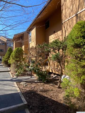 134 Hunter Drive R5, Hunter, NY 12442 (MLS #136889) :: Gabel Real Estate
