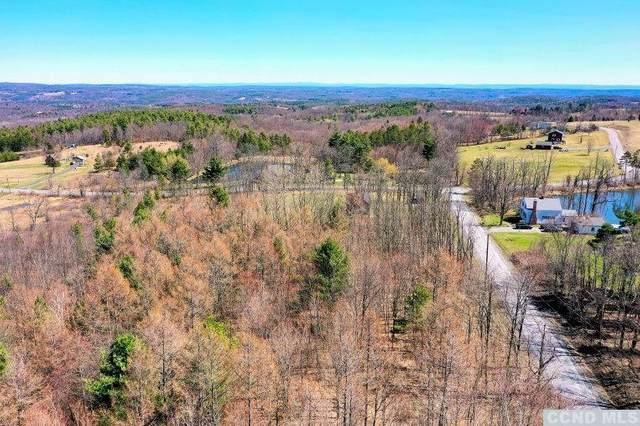 60 Moores Road, Durham, NY 12423 (MLS #136935) :: Gabel Real Estate