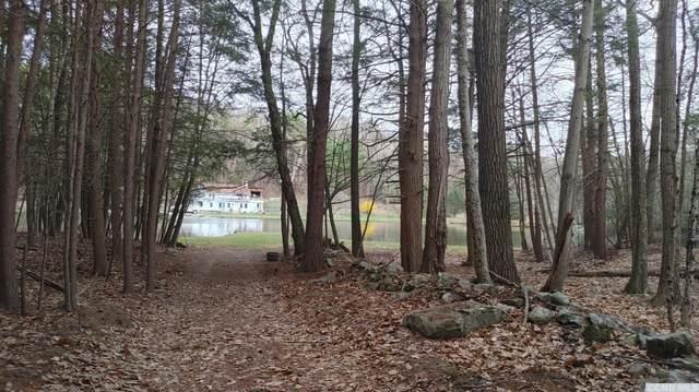 0 E. Honey Hollow Rd. Lot #14, New Baltimore, NY 12508 (MLS #136994) :: Gabel Real Estate