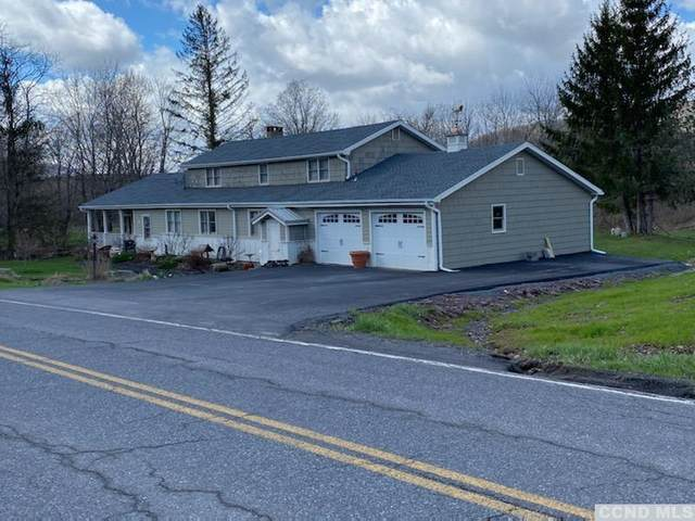 523 Mitchell Hollow Road, Windham, NY 12496 (MLS #137054) :: Gabel Real Estate