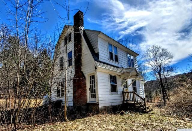 32 Williams Road, Stephentown, NY 12169 (MLS #137073) :: Gabel Real Estate