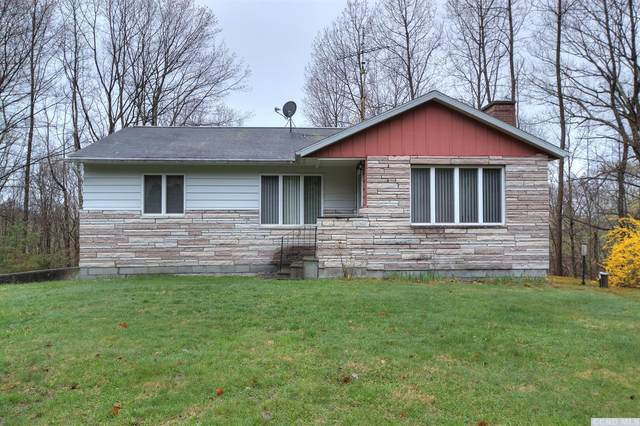 1730 County Route 10, Taghkanic, NY 12520 (MLS #137092) :: Gabel Real Estate