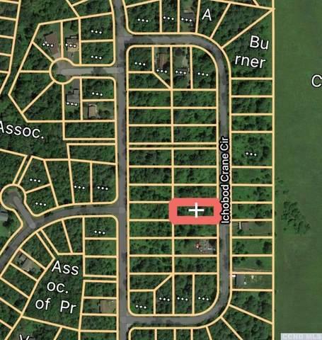 0 Ichabod Crane Circle, Coxsackie, NY 12051 (MLS #137120) :: Gabel Real Estate