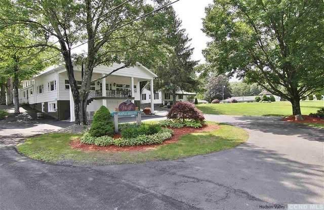360 Cauterskill, Catskill, NY 12414 (MLS #137123) :: Gabel Real Estate
