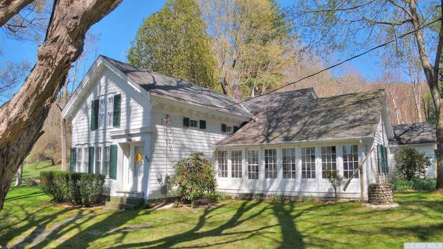 46 Collins Street, Hillsdale, NY 12529 (MLS #137189) :: Gabel Real Estate