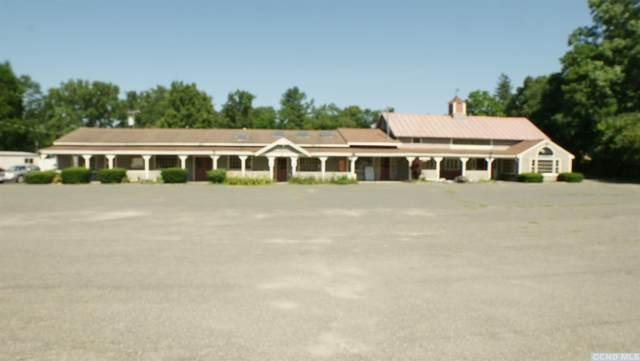 538 State Route 20, New Lebanon, NY 12125 (MLS #137197) :: Gabel Real Estate