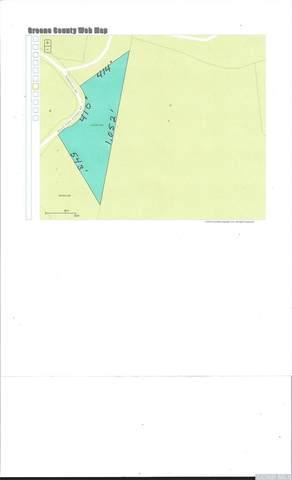35 Rappleyea Road, Lexington, NY 12452 (MLS #137206) :: Gabel Real Estate