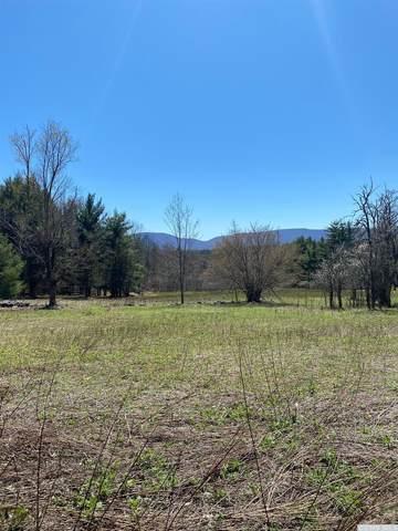 0 Cozy Hollow, Prattsville, NY 12468 (MLS #137289) :: Gabel Real Estate