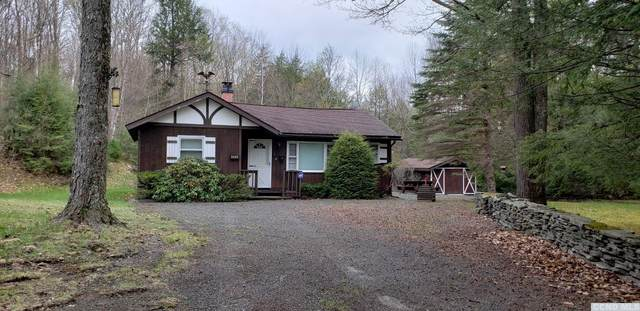 221 Teter Road, Broome, NY 12469 (MLS #137295) :: Gabel Real Estate