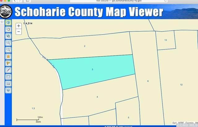 0 Broome Center Road, Middleburgh, NY 12122 (MLS #137391) :: Gabel Real Estate