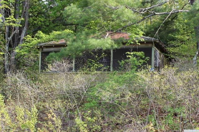 57 Durso Loop, Durham, NY 12422 (MLS #137471) :: Gabel Real Estate