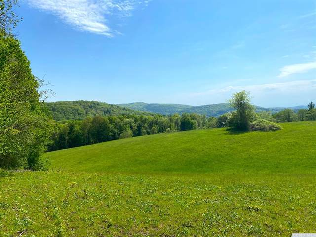0 Maple Drive, Canaan, NY 12029 (MLS #137769) :: Gabel Real Estate