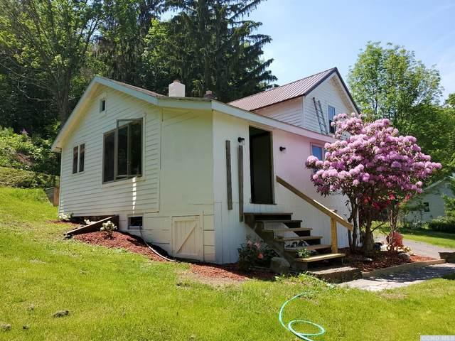 37736 State Highway 23, Roxbury, NY 12434 (MLS #137865) :: Gabel Real Estate