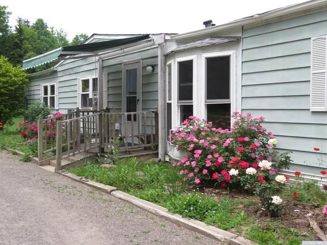 56 Agape Road, Durham, NY 12423 (MLS #137900) :: Gabel Real Estate
