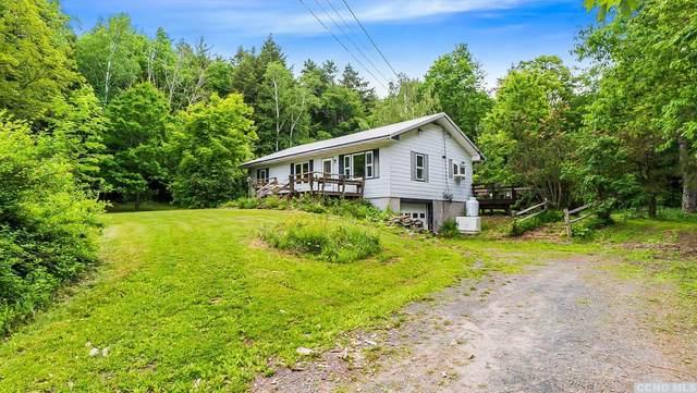 65 Van Etten Road, Lexington, NY 12468 (MLS #137957) :: Gabel Real Estate