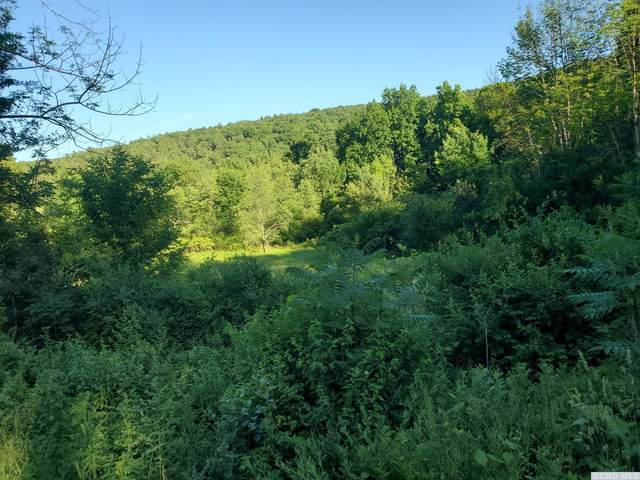 0 County Route 9, New Lebanon, NY 12125 (MLS #137959) :: Gabel Real Estate