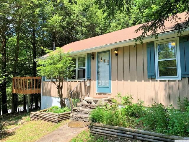 324 New Road, Lexington, NY 12452 (MLS #137972) :: Gabel Real Estate