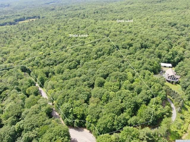 299 Wilderness Road, Jewett, NY 12424 (MLS #138083) :: Gabel Real Estate