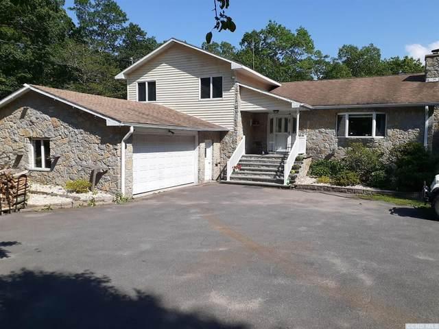 271 Blackhead Mountain Road, Cairo, NY 12474 (MLS #138093) :: Gabel Real Estate