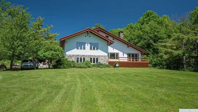 160 Peck, Jewett, NY 12444 (MLS #138108) :: Gabel Real Estate
