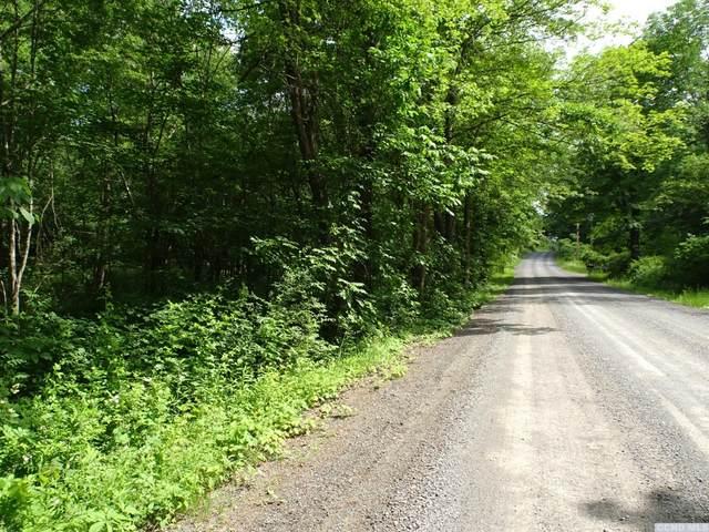 0 Pruesser Road, Claverack, NY 12513 (MLS #138118) :: Gabel Real Estate