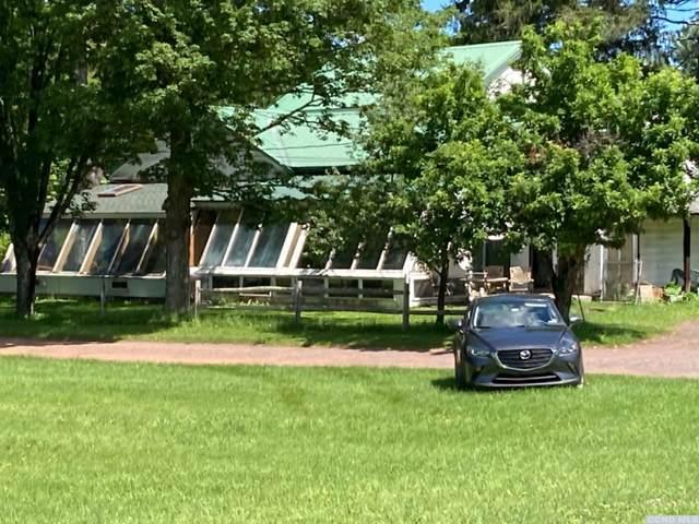 53158 State Highway 30, Roxbury, NY 12474 (MLS #138130) :: Gabel Real Estate