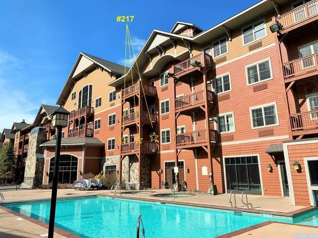 62 Liftside Drive #217 D - Week 1, Hunter, NY 12442 (MLS #138194) :: Gabel Real Estate