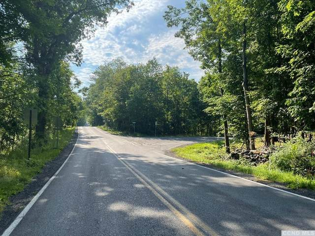 0 County Route 67 (Doman Rd), Cairo, NY 12431 (MLS #138256) :: Gabel Real Estate