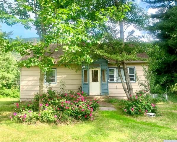 10899 Rt 23 A, Lexington, NY 12452 (MLS #138257) :: Gabel Real Estate