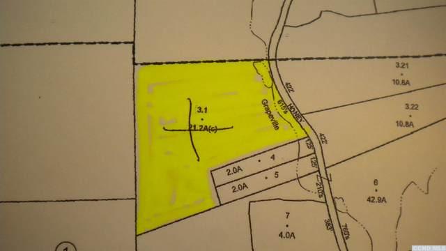 0 Honey Hollow Road, New Baltimore, NY 12124 (MLS #138269) :: Gabel Real Estate