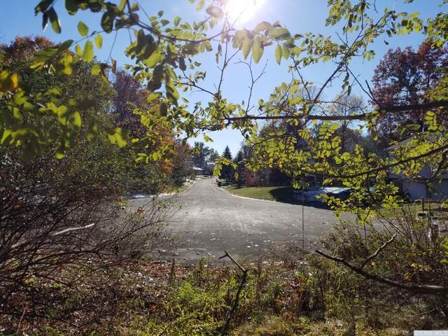 0 Overlook Court #38, Philmont, NY 12565 (MLS #138318) :: Gabel Real Estate