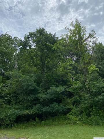 0 Washington Avenue, Hannacroix, NY 12087 (MLS #138329) :: Gabel Real Estate