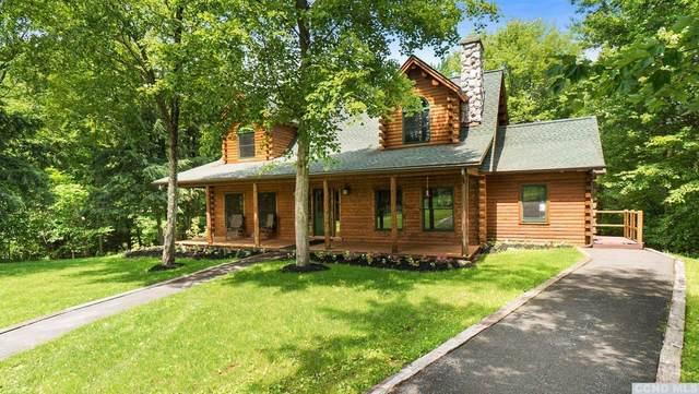 300 Allen Teator, Durham, NY 12422 (MLS #138343) :: Gabel Real Estate