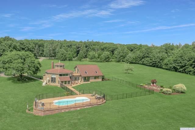 409 Bridge Road, Middleburgh, NY 12023 (MLS #138350) :: Gabel Real Estate